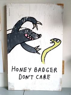 Honey Badger - you know he's bad ass just like my dachshund!