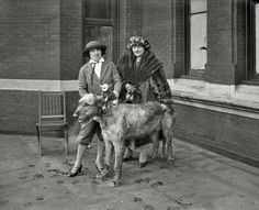 "January 26, 1923. Washington, D.C. ""Largest and smallest dog at dog show."" Previously seen here. Harris & Ewing glass negative"