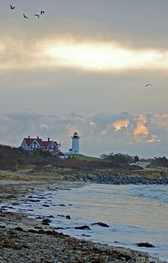 sunrise : Cape Cod