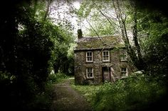 A cottage in the forest. Ivy cottage in Cardigan, Wales Witch Cottage, Cozy Cottage, Cottage Living, Cottage Homes, Cottage Style, Country Living, Abandoned Houses, Old Houses, Abandoned Places