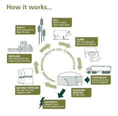 Biogas production