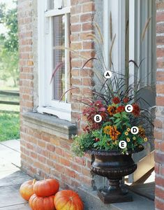 Make a statement at your entrance with a classic garden urn or two. Use flowers and foliage with similar autumn hues to create a warm welcome. #fallcontainergarden #containergardenplans #fallgardening #flowerpots #bhg Fall Container Plants, Fall Containers, Container Gardening, Succulent Containers, Vegetable Gardening, Gardening Tips, Container Flowers, Fall Flower Pots, Fall Flowers