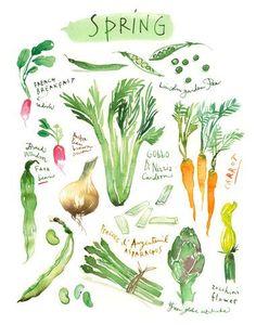 Impresiones de vegetales conjunto de 4 por lucileskitchen en Etsy