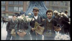 Meninos comprando flores em 1908.