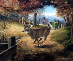 Responsible hunting, game management and wildlife conservation are important aspects of any wild game hunting, but many find the challenge of deer hunting to be the most challenging. Here are some ideas and deer hunting tips to make y Deer Hunting Tips, Hunting Art, Bow Hunting, Deer Wallpaper, Animal Wallpaper, Wildlife Paintings, Wildlife Art, Whitetail Deer Pictures, Deer Pics
