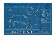 Dachshund Blueprint, perfectly made.