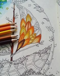 Work in progress  Enchanted forest by @johannabasford  and @staedtlermars  pencils #johannabasford #enchatedforest #colouringbook #pencils