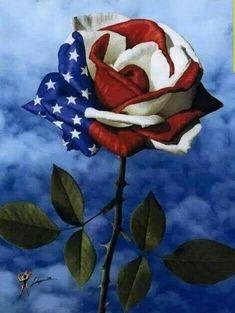 Usa Wallpaper, Flower Wallpaper, Mosaic Diy, 5d Diamond Painting, Painting Tools, Painting Canvas, Bellisima, Memorial Day, American Flag