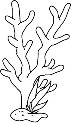 Coral Drawing | Index Of /ces/clipart/Carson Dellosa Clipart/Carson Dellosa