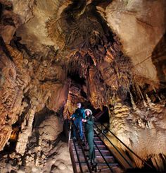 I wanna do some cave exploration with the kids.