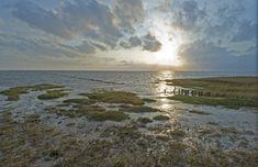Wadden fotografie - Waddengoud - Wereld Erfgoed Waddenzee