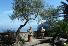 villa Fondi di Sorrento Sorrento, Sangria, Naples, Inspiration, Art, Biblical Inspiration, Art Background, Kunst, Performing Arts