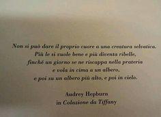 La saggia Audrey