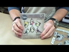 RESERVE Tim Holtz Sizzix BIRD CRAZY Thinlits Die And Cling Stamp Set THS212 at Simon Says STAMP!