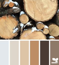 Rustic Tones - http://design-seeds.com/index.php/home/entry/rustic-tones4
