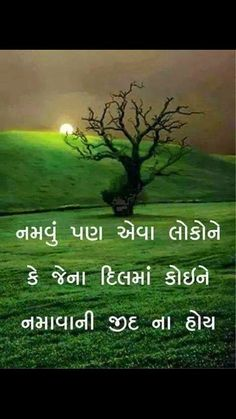 Gujrati quotes