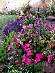 Flower bed mound build me a flower bed pinterest for Narrow flower bed ideas