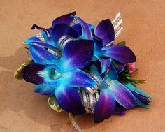 Tie-dyed mini orchids