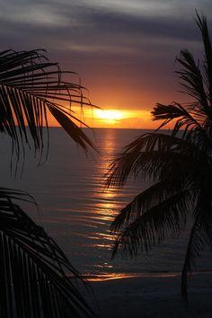 Naples, Florida, Sunset