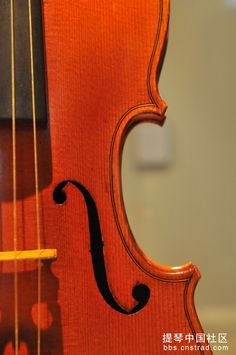 Violin, Music Instruments, Musical Instruments