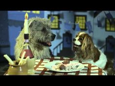 Lady and the Tramp scene remake with real dogs