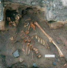 Forensic analysis of a 900-year-old skeleton belonging to a young man discovered in Scotland shows he was murdered by someone wielding a three-inch long dagger.  http://www.archaeology.org/news/1847-140221-scottish-medieval-murder-victim