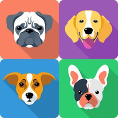 Set icon flat design for dog head different breeds on Behance