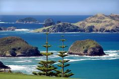 Norfolk Island - 1.5 hrs by air from Auckland, subtropical climate, looks heavenly for a World Heritage Site based on its Australian Convict history...