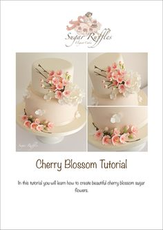 Cherry Blossom Sugar Flower Tutorial