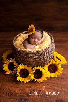 A sweet idea for a Fall Newborn Photo. #togally #newborn Courtesy of Kristi Kruse, newborn sunflower picture.