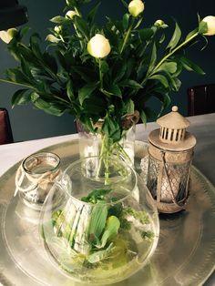 Dienblad waterplanten