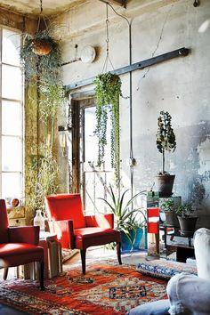 Murs bruts et plantes d'intérieur cohabitent dans le salon coloré