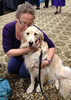 nice LCC Comfort canine and their trainers truly make a distinction Check more at http://worldnewss.net/lcc-comfort-canine-and-their-trainers-truly-make-a-distinction/