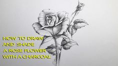How to draw and shade A Rose flower with charcoal  pencil   easy step by...