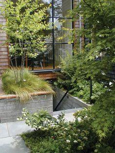 Steps to the basement.  Scott Lewis Landscape Architecture - Parkside Garden - SLLA - San Francisco