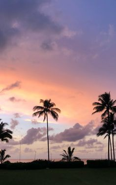 749 best sky aesthetic images in 2019 Sky Aesthetic, Aesthetic Images, Aesthetic Backgrounds, Aesthetic Wallpapers, Aesthetic Iphone Wallpaper, Palm Tree Sunset, Palm Trees, Phone Backgrounds, Wallpaper Backgrounds