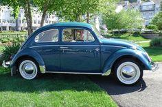 1964 Sea Blue VW Beetle: 1964 Sea, Vw Beetles