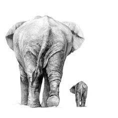 by.chanmi_la 코끼리 소묘..는 작년거 요번에 그린거 스캔이 귀찮으아윽다 막학년일때 일학년 수업을 당당히(?) 들으면서 즐겁게 그린…