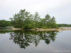 Schooner Island on #Yawgoog Pond, as viewed from Armstrong Point on the Yellow Trail, Rockville, Hopkinton, Rhode Island (RI).  A 2014 image by David R. Brierley.