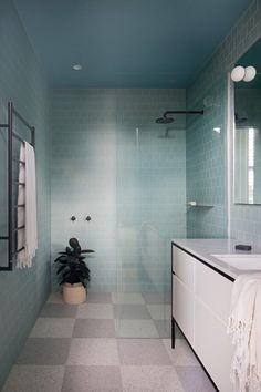 Frameless Shower Doors: Pros, Cons, Cost and Cleaning   Apartment Therapy