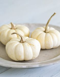 love me some white mini pumpkins - paint the stem gold. halloween ~ decorations ~ bright & beautiful.