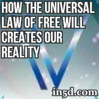 In the beginning, we received the gifts of free will and individual consciousness in this experience we call life.