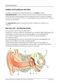 Horst Du Mich Medienpaket Zu Den Themen Ohr Horen Und