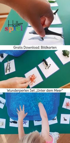 Fishing sea creatures from the wonder pearl ocean and assign them to the picture cards - an exciting learning game for all the senses, adapted to every age . Montessori Trays, Montessori Materials, Educational Games, Learning Games, Kindergarten Architecture, Gratis Download, Kindergarten Lesson Plans, Preschool Themes, Infancy