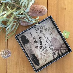 Feather & Banksia Wooden Art Tray  www.trudyricecollection.com