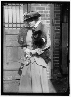 HITCHCOCK, MISS R. DOG SHOW