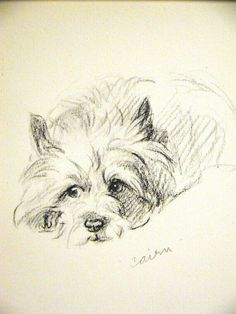 bleistiftzeichnung Cairn Terrier Dessin A… – Keep up with the times. Pencil Drawings, Art Drawings, Drawing Art, Pastel Portraits, Cairn Terriers, Dog Paintings, Westies, Dog Art, Yorkie