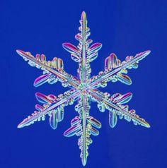 real snowflake close up
