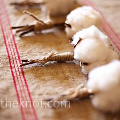 Natural cotton bolls