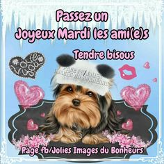 Bon Mardi, Facebook, Hapy Day, Thinking About You, Bonjour, Good Night, Positive Thoughts, Quote